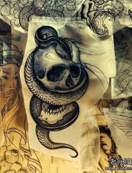 流行很帅的一张蛇与骷髅纹身手稿