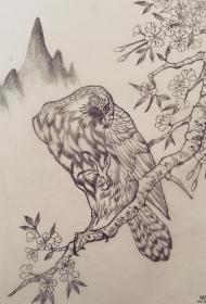 传统老鹰站在桃花枝上纹身图案手稿