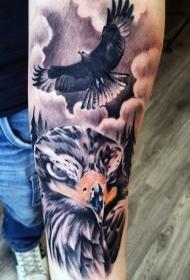 手臂彩色锐利的鹰纹身图案