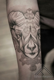 几何风格黑色点刺身山羊头手臂纹身图案