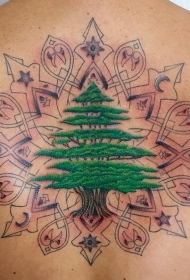 背部3D彩色的树和各种神秘饰品纹身图案