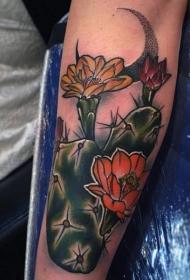 现代传统风格的彩色仙人掌开花手臂纹身图案
