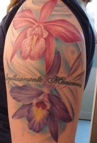 大臂彩色的兰花和字母纹身图案