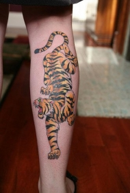 小腿彩色的下山虎纹身图案