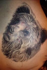 超级写实的棕色熊纹身图案
