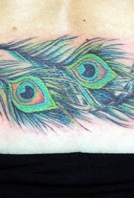 腰部三支美丽的孔雀羽毛纹身图案
