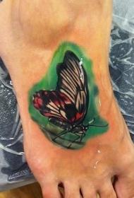 脚背绿色背景中的蝴蝶纹身图案
