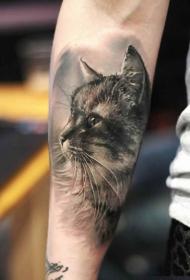 惊人的非常逼真黑灰猫肖像小臂纹身图案
