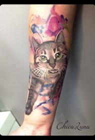 手臂可爱的猫咪彩色纹身图案