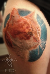 写实风格的彩色猫头纹身图案