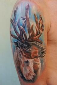 大臂写实彩色鹿头纹身图案