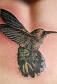 手臂彩色蜂鸟飞行的纹身图案