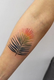 小臂完美的彩色羽毛纹身图案