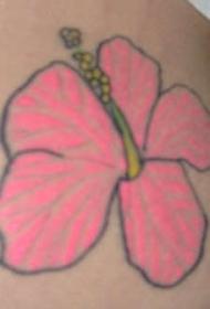 肩部粉红色的芙蓉花纹身图片