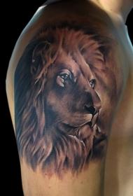 肩部棕色逼真的狮子头纹身图案