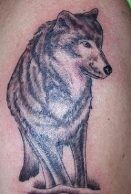 肩部棕色漂亮的狼纹身图案