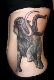腰侧黑色墨水大象纹身图案