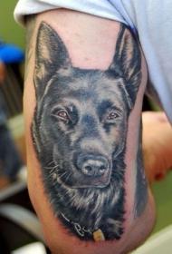 男性手臂逼真德国牧羊犬纹身图片
