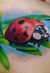 肩部色彩鲜艳的瓢虫纹身图案