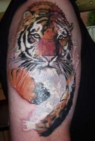 肩部彩色运动的老虎纹身图片