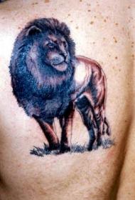 肩部蓝色老狮子纹身图案