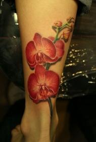 腿部彩色逼真的红色兰纹身图片
