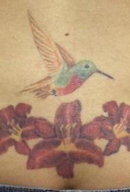 腹部彩色三花和蜂鸟纹身图案