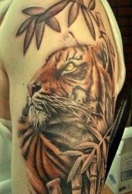 肩部彩色老虎在丛林纹身图案