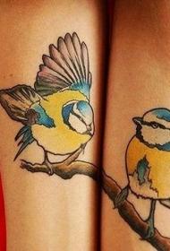 手臂彩色小鸟纹身图片