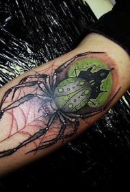 手臂彩色爬行蜘蛛纹身图案