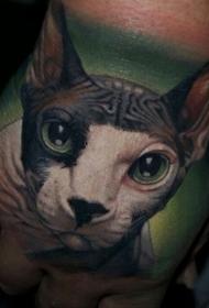 手部彩色可爱的猫纹身图案