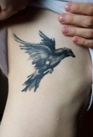 纹身鸟 女生侧腰上黑色的小鸟纹身图片