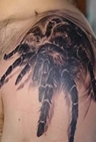 炫酷立体蜘蛛纹身图片