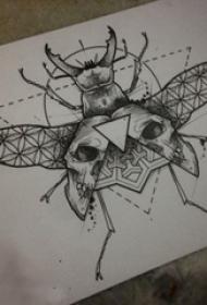 黑灰素描创意精致昆虫小动物纹身手稿