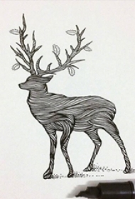 黑色线条创意个性动物文艺小清新纹身手稿