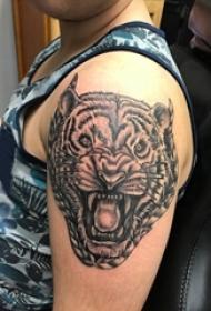 男生手臂上黑灰素描点刺技巧创意霸气老虎头纹身图片