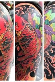 纹身红鲤鱼 男生手臂上鲤鱼纹身图片