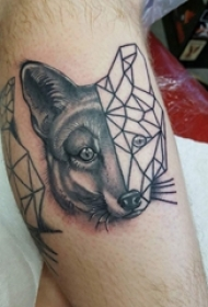 小动物纹身 男生小腿上黑色的狐狸纹身图片