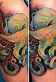 章鱼纹身图案 男生手臂上动物纹身章鱼纹身图案