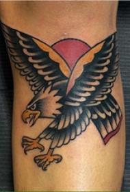 彩色老鹰纹身 男生手臂上彩色老鹰纹身图片