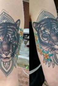老虎图腾纹身 女生手臂上老虎图腾纹身图片