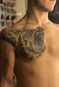熊纹身 男生胸部熊纹身图片