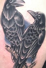 纹身鸟   男生后背上彩绘的鸟纹身图片