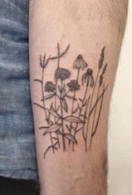 植物纹身 男生手臂上黑灰的植物纹身图片