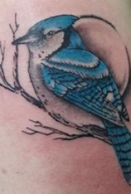 纹身鸟  男生手臂上鸟和树枝纹身图片
