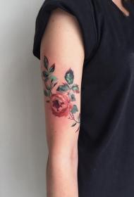 纹身玫瑰花   含蕾欲放的玫瑰花纹身图案