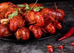 红润的小龙虾图片(18张)