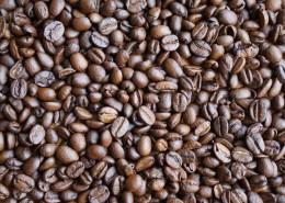 颗粒饱满的咖啡豆图片(15张)