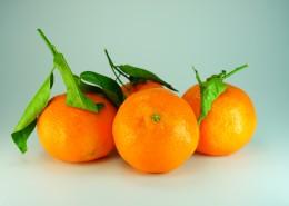 又酸又甜的橘子图片(10张)