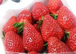 颜色鲜红的草莓图片(13张)